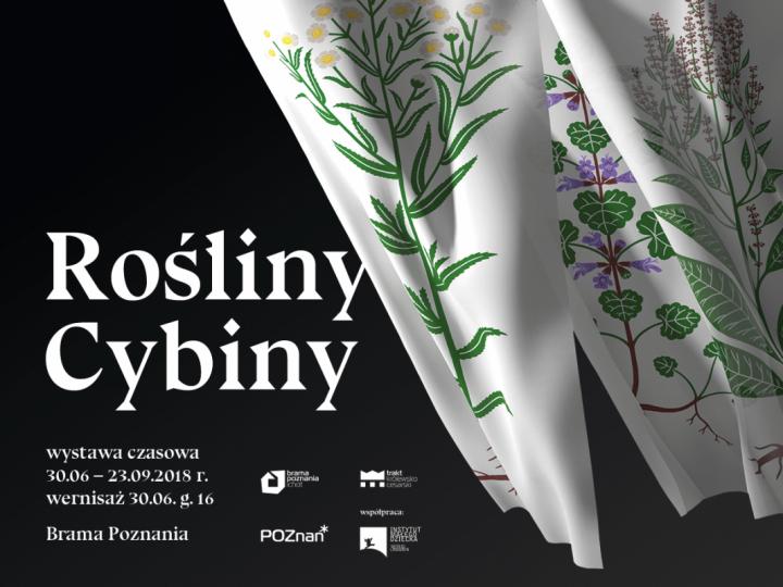 ROŚLINY CYBINY – wystawa czasowa || 30.06 – 23.09.2018 || Śluza Katedralna Poznań