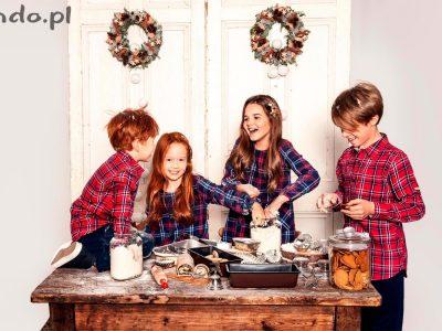Coraz bliżej Święta – Endo odkrywa bożonarodzeniowe tajemnice!