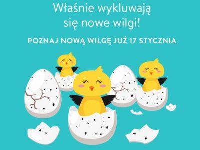 Zaproszenie na wyjątkowy event – nową odsłonę Wydawnictwa Wilga